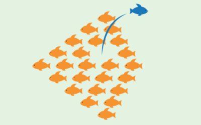 L'entrepreneuriat comme moyen de reconversion professionnelle